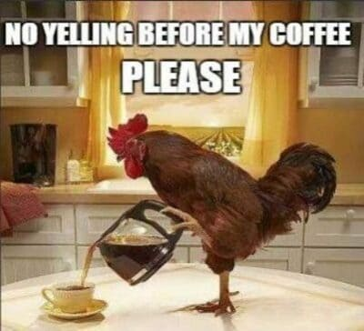 funny good morning images