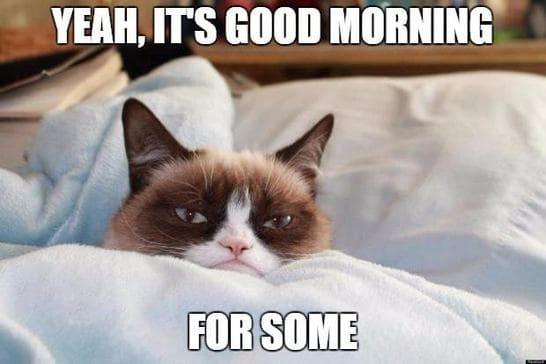 funny ways to say good morning